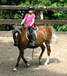 Ponyunterricht