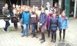Ponygruppe